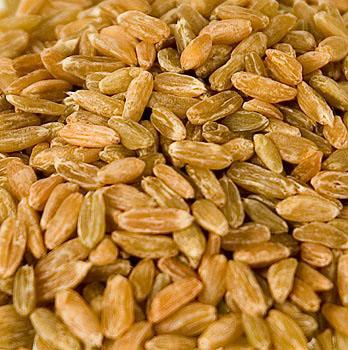 Špalda, polozralé, celé, sušené v peci na dřevo, 1 kg