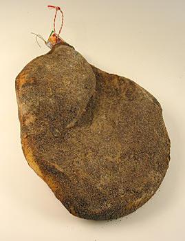 Schinken Toscana, celá šunka bez kosti, 18 měsíců, Montalcino Salumi, 7 kg