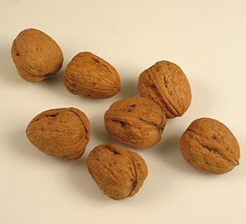 Vlašské ořechy, celé se skořápkou, Jumbo 32+, 1 kg