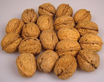 Vlašské ořechy, celé se skořápkou, Jumbo 34+, 25 kg