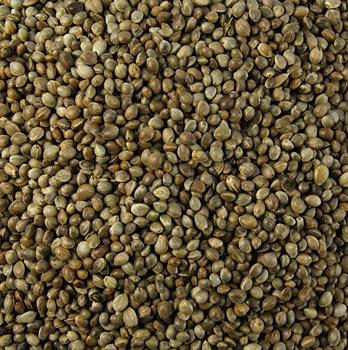 Konopná semena, neloupaná, nepražená, BIO-certifikace, 20 kg