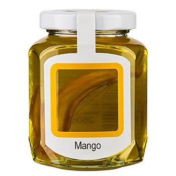 Akátový med se sušeným mangem 250 g